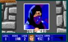 Wolfenstein 3D Mortal Kombat Edition :