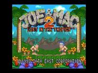Joe & Mac 2: Lost in the Tropics